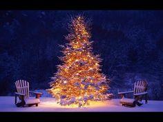 Kerstliedjes 2015! (Met songtekst) - YouTube