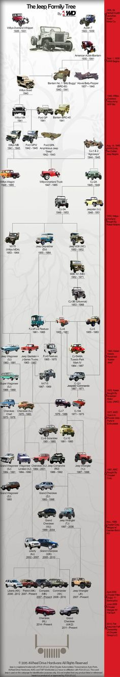 The Jeep Family Tree isn't quite as straightforward as you'd think. Take a look at the lineage of the Jeep with this Jeep Family Tree by Jeep Willys, Jeep Wj, Jeep Truck, Jeep Wagoneer, Willys Wagon, Auto Jeep, Jeep Pickup, Pickup Trucks, Jeep Cherokee