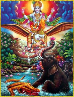 "☀ SHRI VISHNU GARUDA ॐ ☀ The deliverance of the elephant Gajendra Gajendra prayed:""The Supreme Personality of Godhead is realized by pure devotees who act in the transcendental existence of bhakti-yoga. He is the bestower of uncontaminated happiness. Krishna Flute, Krishna Art, Krishna Painting, Hare Krishna, Chakras, Ganesh Idol, Ganesha, Krishna Avatar, Mother Kali"