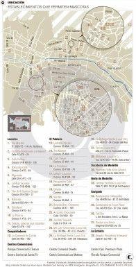 Lugares pet friendly en Medellín, La Estrella y Envigado