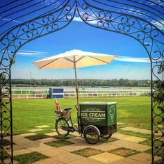 Our home town Ascot racecourse, perfect summers day to serve ice cream. Ascot, Special Events, Plum, Ice Cream, Patio, Outdoor Decor, Summer, No Churn Ice Cream, Summer Time