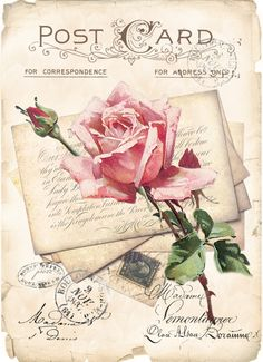 Vintage rose postcard Digital collage P1022 for personal use