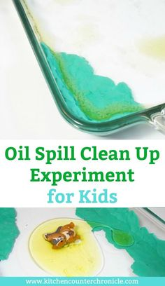 A hands on environmental science experiment for kids. How will your child do in this oil spill clean up experiment? Test the hypothesis.