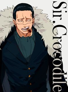 Crocodile One Piece, Sir Crocodile, One Piece Fanart, One Piece Anime, One Piece Movies, One Piece Drawing, One Piece Pictures, Animated Icons, Anime Child