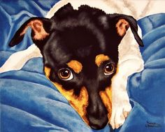 Blue Velvet Bliss - Rat Terrier by Tanya Amberson, painting by Tanya & Craig Amberson