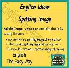 Your  ___________ your mother.  1. a spitting image of 2. look like  3. both http://english-the-easy-way.com/Idioms/Idioms_Page.html #EnglishIdiom