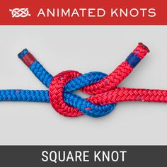 The Square Knot (Reef Knot) is usually learned when we tie our shoelaces. Admittedly it is usually a bow that we tie - but the underlying knot is a Square Knot. Prusik Knot, Animated Knots, Scout Knots, Lanyard Knot, Sailing Knots, Bowline Knot, Rope Knots, Rope Braid, Life Hacks