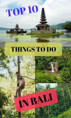 Planning your holiday or honeymoon to Bali in Indonesia? Then you'll love this list of the 10 best things to do in Bali. From blissful beaches and iconic temples to finding a hidden gem waterfall, hiking up a volcano for sunrise and backpacking on the wilder islands, take inspiration from my own travel guide to Bali and plan your dream getaway today - check out my 10 best tips here!