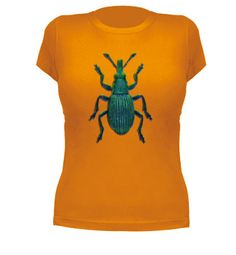 Camiseta con gorgojo real.