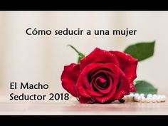 Cómo seducir a una mujer - El Macho Seductor 2018 - YouTube
