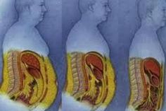 Best Ways to Lose Belly Fat - 3 Weight Loss Tips Having the proper nourishment is a significant consideration in all of your efforts to reduce weight, develop muscular tissue, or obtain those six pack abdominals. Best Weight Loss, Healthy Weight Loss, Weight Loss Tips, Losing Weight, Reduce Weight, How To Lose Weight Fast, Loose Weight, Body Weight, Baby Fat