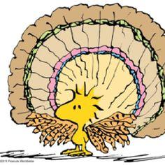 Thanksgiving, a la Woodstock
