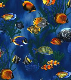 Novelty Cotton Fabric-Tropical Fish