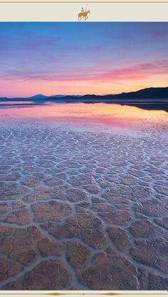 #SalarDeUyuni #Uyuni #Bolivia Uyuni Bolivia, Beach, Water, Outdoor, Salar De Uyuni, Gripe Water, Outdoors, The Beach, Beaches