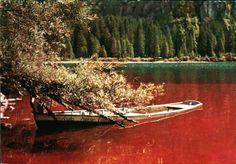 #Barche a remi da sempre popolano le #rive del #Lago! Certo che #navigare sulle acque rosse era un'altra cosa!