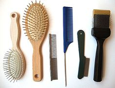 Dog brushes and combs for getting out knots