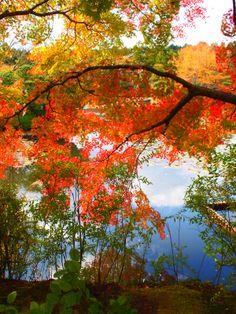 KYOTO Japan   http://lo-ka.com