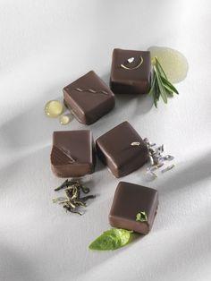 William Curley | Couture Chocolates