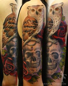 tattoo owl and skull