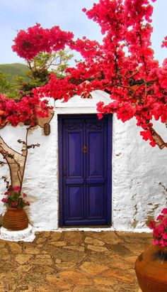 Colorful door in Skopelos, Thessaly, Greece