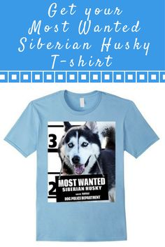 Most Wanted Siberian Husky T-shirt - Dog Tee Shirts -- 100% Cotton. Imported. Machine wash cold with like colors, dry low.Anvil relaxed fit, black, blue 2 types (royal blue, baby blue), white, yellow, crew neck tee, sayings, quotes, unisex, man, women, girls, boys. Lightweight, Classic fit, TearAway label, Double-needle sleeve and bottom hem. Dog Lover t shirts, Dog Mugshot t-shirts, Siberian Husky tee shirts, with graphics. 4.5 oz 100% Combed Ringspun Cotton, machine wash cold with like…