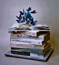 i think i want a book cake for my 21st.... catching fire, brisingr, fallen star, the great gatsby, and on top a book open up just like this but something else coming out