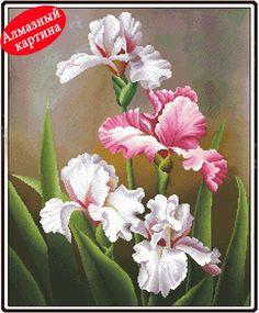 fleurs d'hiris | de fleurs d'iris en Ligne à des Grossistes tableaux de fleurs d ...