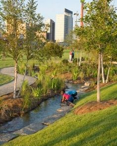 Landscape architect Tom Leader oversaw the… Parque Linear, Park Landscape, Water Management, Urban Park, Landscape Architecture Design, Rain Garden, Parking Design, Public Garden, Urban Planning