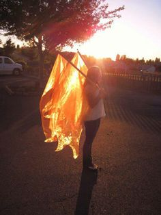 Fire flags. Look how the sun shines through them!!