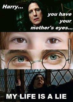 A lie - 15 hilarious snape memes harry potter fan art, hogwarts, humor, Memes Do Harry Potter, Harry Potter Fandom, Harry Potter World, Potter Facts, Harry Potter Stuff, Harry Potter Makeup, Harry Potter Scar, Harry Potter Funny Pictures, Eyes
