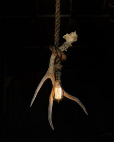 The Wild Stag Pendant V6 Rope Industrial Light by MoonStoneFox