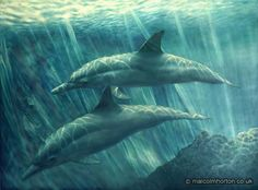 Sea Dancers - #poster #dolphins #art #spirit #magic #nature #ocean