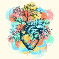 Anatomical human heart by intueri on @creativemarket