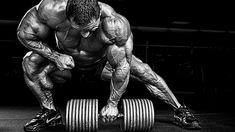 Leistungssteigerung und Muskelaufbau mit Creatin Ethyl Ester Kostenlos lesen ➨ http://j.mp/1JVFlSl