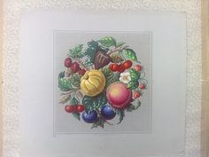 A Rare Berlin WoolWork Fruit Pattern Produced By SAJOU In Paris
