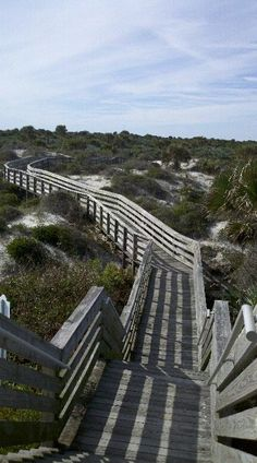 The Dunes State Park, New Smyrna Beach, Fl. Visit in the winter months to avoid mosquitoes.