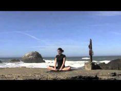 Yoga Flow 101       15 minutes       Challenging Beginner Practice