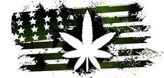 Marijuana: Legalize It, Don't Glorify It