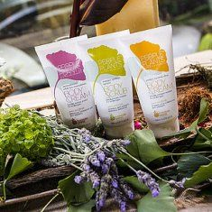 Introducing People For Plants – Affordable Skin Care