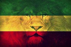 See what duchessbee (duchessbee) found on We Heart It, your everyday app to get lost in what you love. Bob Marley Lion, Bob Marley Art, Rasta Art, Rasta Lion, Reggae Art, Jah Rastafari, Rasta Colors, Stoner Art, Weed Art