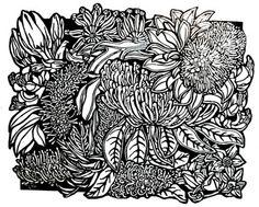Soulsong Art – Lynette Weir's Studio Diary ~ Art Drawing Linocuts Photographs Australian Wildflowers Wildlife drop by & see her work! Australian Animals, Australian Artists, Rainforest Flowers, Australian Wildflowers, Animals Black And White, Large Painting, Linocut Prints, Woodblock Print, Botanical Illustration