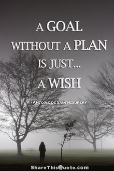 A goal without a plan is just a wish. Antoine de Saint-Exupéry
