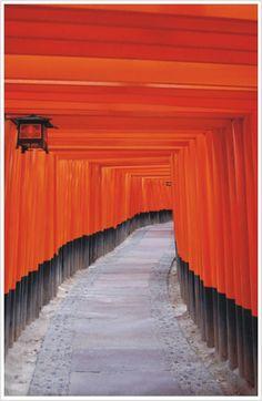 Famous tunnel of Torii gates at Fushimi Inari Shrine, Kyoto.