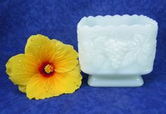 Vase Square Footed Milk Glass Vase is by RichardsRarityRealm, $16.00