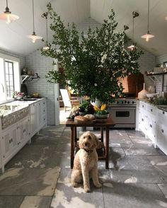 50 Favorites for Friday: Gorgeous New Kitchen Designs Best Kitchen Design, New Kitchen Designs, Interior Design Kitchen, Home Design, Layout Design, Design Ideas, Kitchen And Bath, Kitchen Decor, Open Kitchen