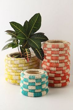 """Going on a """"neat plant pot"""" adventure at goodwill/Value Village with honeys' mama in a few weeks. IDEAS!!"""