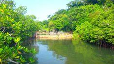 PALAWAN : de Puerto Princesa à Coron en 10 jours Puerto Princesa, Coron, Palawan, San Jose, Les Philippines, Road Trip, River, Outdoor, Cabanas