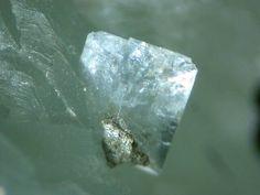 Goosecreekite, CaAl2Si6O16•5(H2O), New Goose Creek Quarry, Leesburg, Loudoun Co., Virginia, USA. 1.3mm xl on prehnite.  Copyright: © JBS 2006