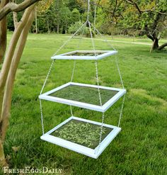 DIY Tiered Herb Drying Rack Using Repurposed Picture Frames | Fresh Eggs Daily®