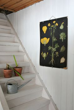 Ebba Masalin Scandi Style, Rustic Style, Modern Rustic, Botanical Interior, Other Space, School Posters, Botanical Prints, Stairways, Color Splash